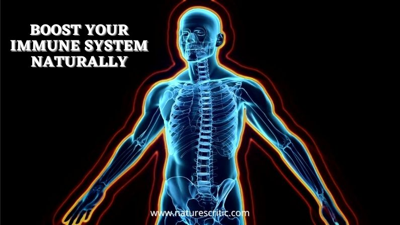 Boost Your Immune System – Here are 6 Simple Tips